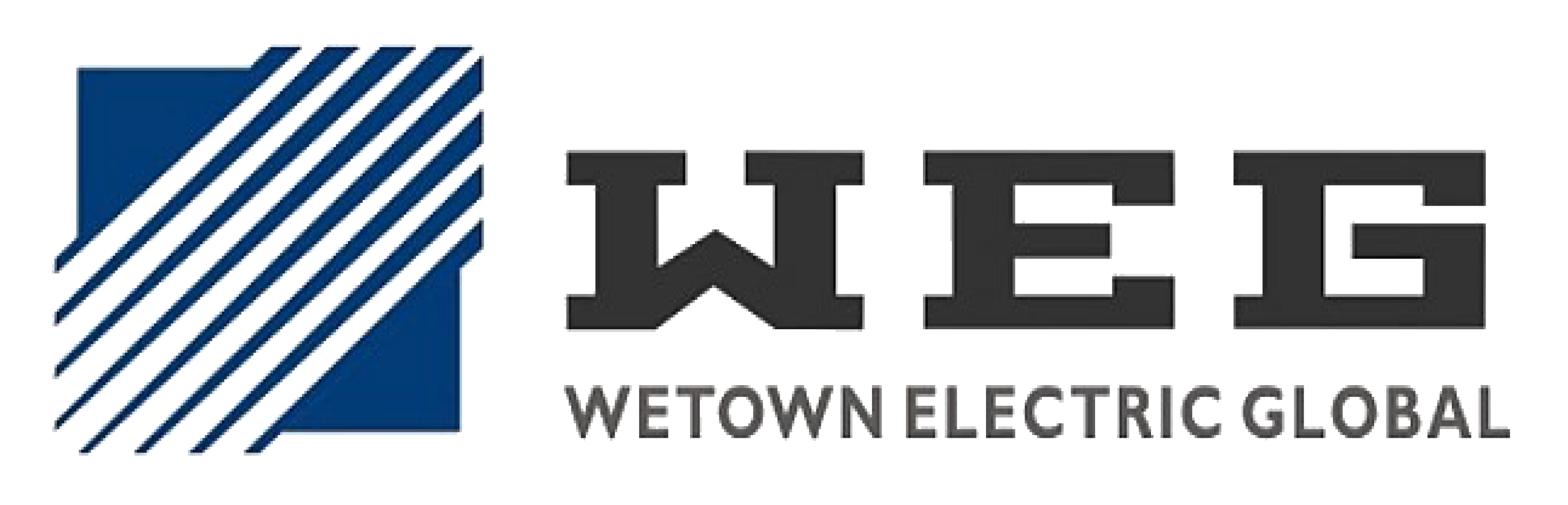 Wetown Electric (Global) Co., Ltd.